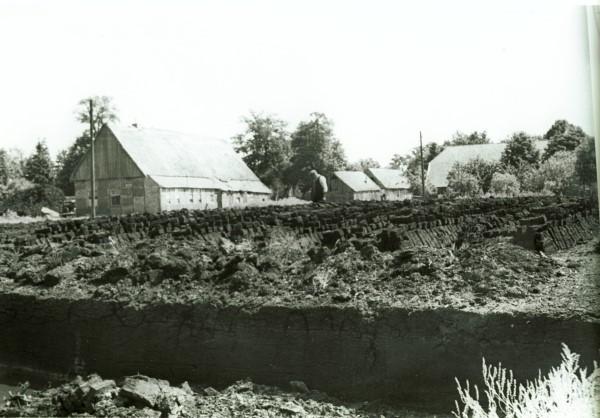 Schoonebeek Veen